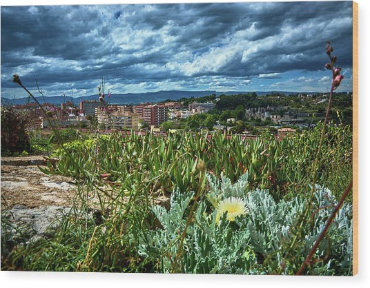 Tarragona From The Roman Wall Wood Print