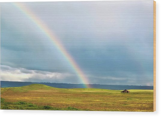 Taste The Rainbow Wood Print