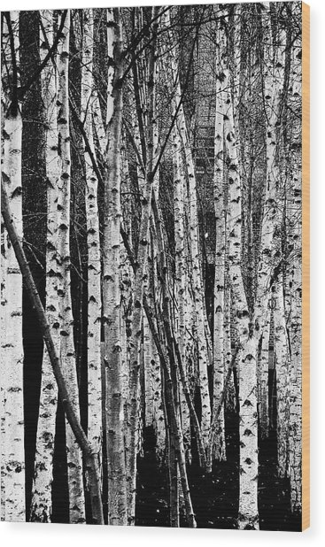 Wood Print featuring the digital art Tate Willows by Julian Perry