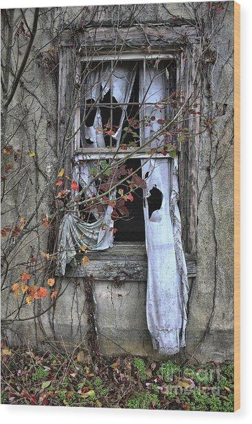 Tattered Curtain Fall '09 No.3 Wood Print by Sari Sauls