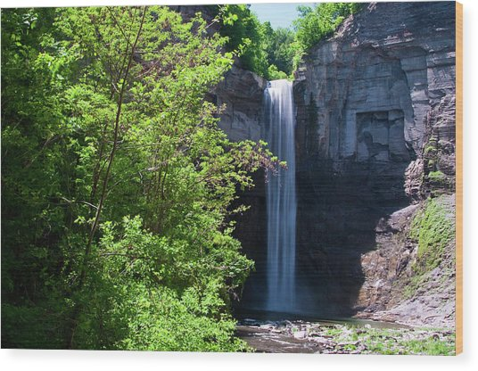 Taughannock Falls 0466 Wood Print