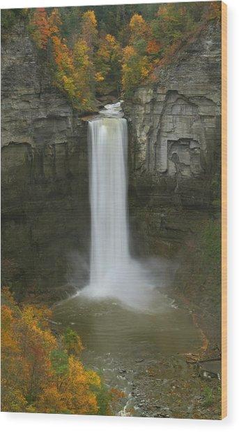Taughannock Falls In Autumn Wood Print