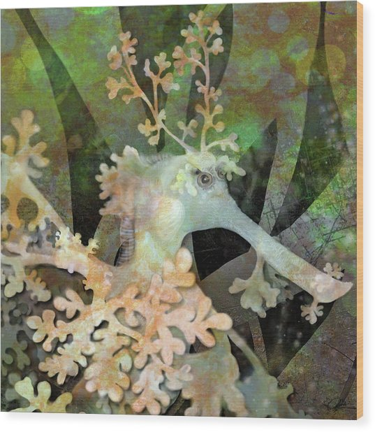 Teal Leafy Sea Dragon Wood Print