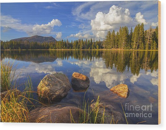 Teapot Lake Wood Print