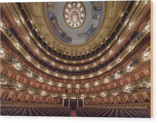Teatro Colon Performers View Wood Print