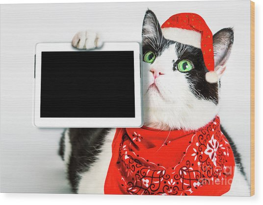 Technology Christmas Cat Wood Print
