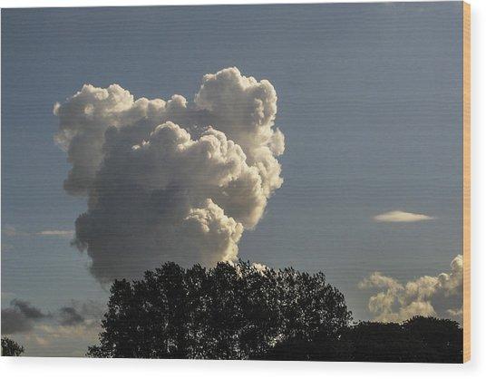 Teddy Bear Cloud Wood Print by Kim Lessel