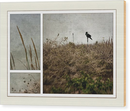 Ten Is For Sorrow Wood Print