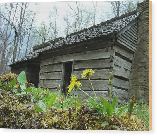 Tennessee Homestead Wood Print by Linda Russell