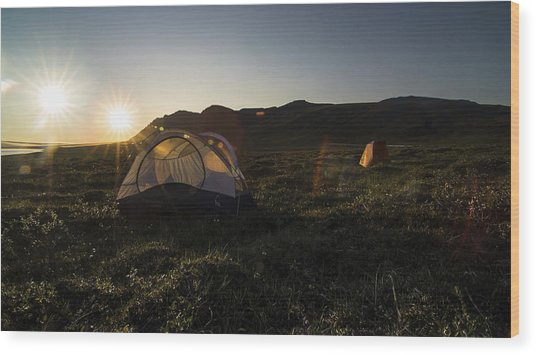 Tenting In The Midnight Sun Wood Print