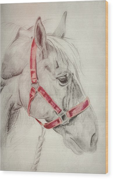 Tequila Sketch Wood Print by JAMART Photography