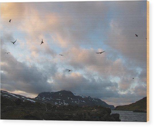 Terns At Midnight Wood Print by Sidsel Genee