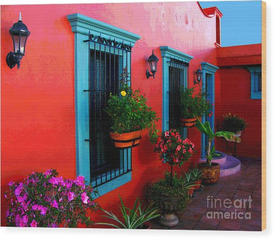 Terrace Windows At Casa De Leyendas By Darian Day Wood Print by Mexicolors Art Photography