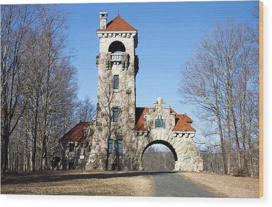 Testimonial Gateway Tower #1 Wood Print