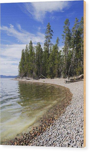 Teton Shore Wood Print
