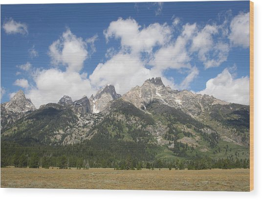 Teton View Wood Print