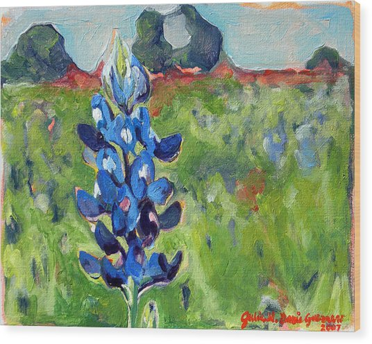 Texas Blue Bonnet Wood Print