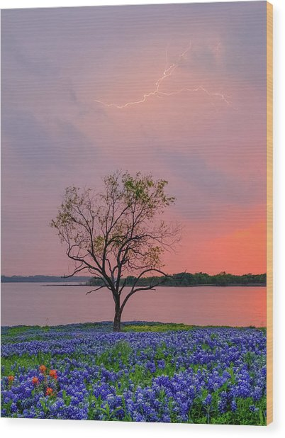 Texas Bluebonnets And Lightning Wood Print