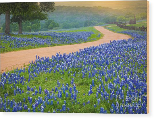 Texas Country Road Wood Print