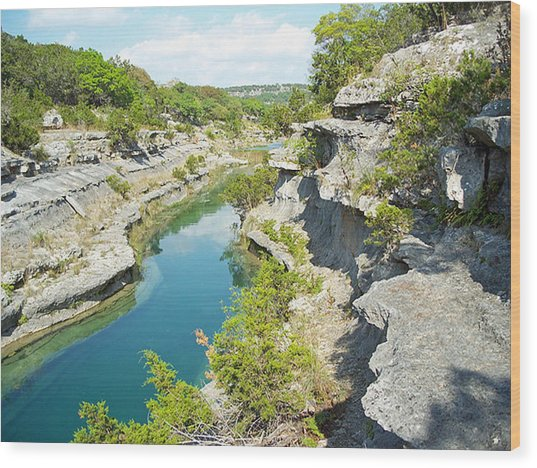 Texas Hill Country Wood Print by Rebecca Shupp