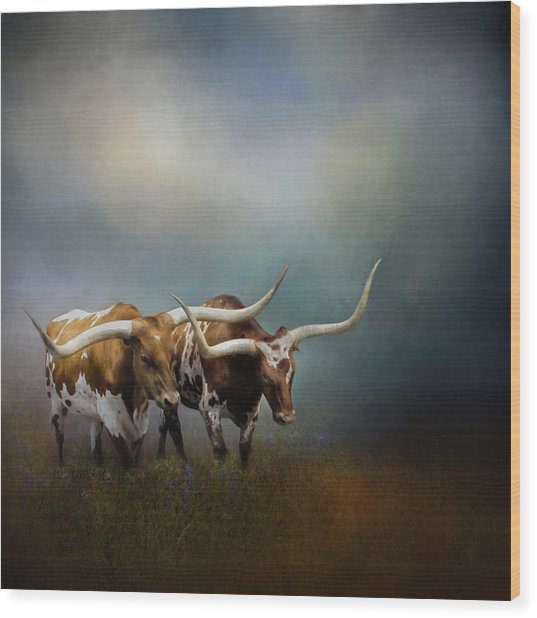 Texas Longhorn Pair Wood Print