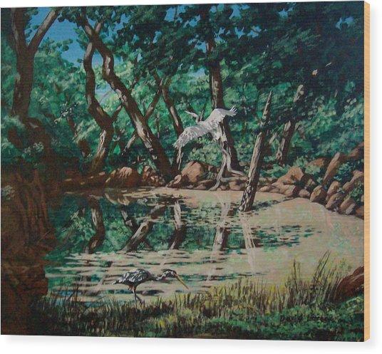 Texas Pond Wood Print by David  Larcom