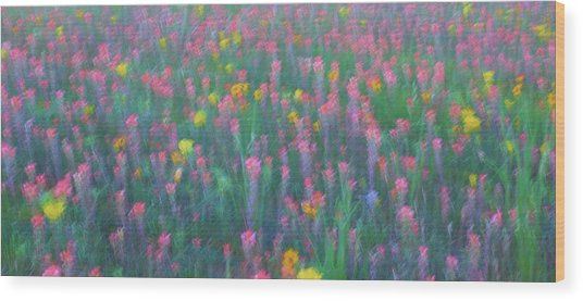 Texas Wildflowers Abstract Wood Print