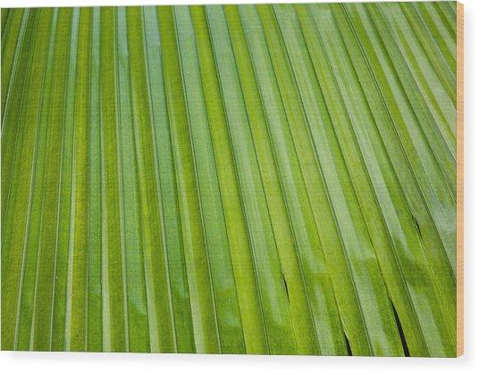 Texture 330 Wood Print