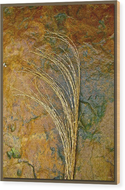Textured Nature Wood Print