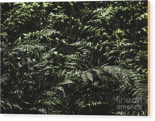 Textures Of A Rainforest Wood Print