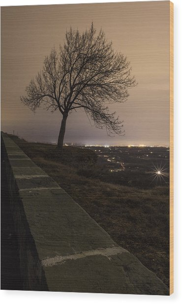 Thacher Park Twilight Wood Print