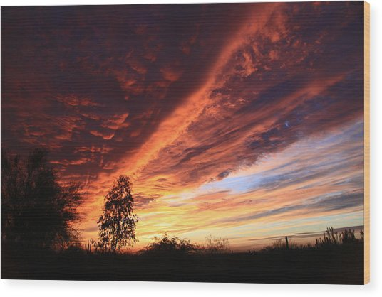 Thanksgiving Sunset Wood Print