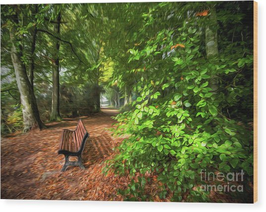 The Abbey's Bench 2 Wood Print