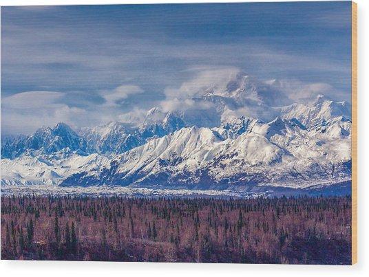 The Alaska Range At Mount Mckinley Alaska Wood Print