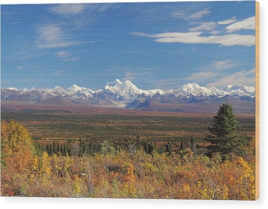 The Alaska Range From The Denali Highway Wood Print