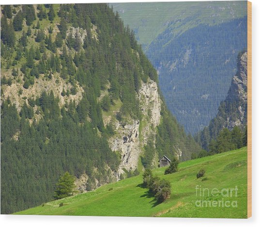 The Alps In Spring Wood Print