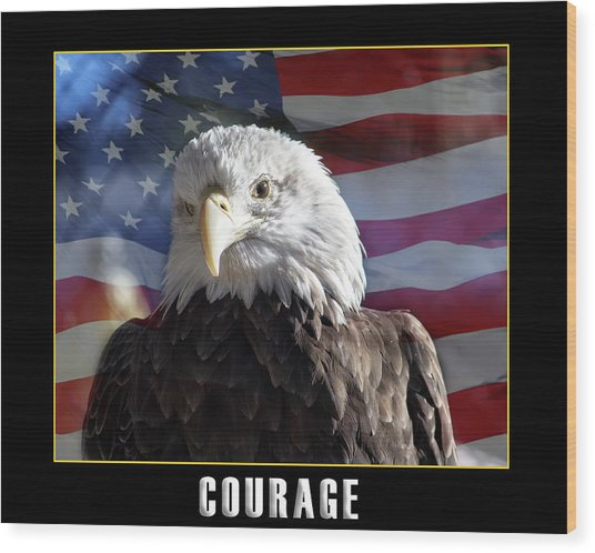 The American Bald Eagle Wood Print