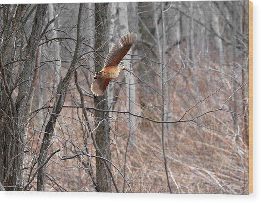 The American Woodcock In-flight Wood Print