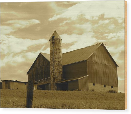The Amish Silo Barn Wood Print
