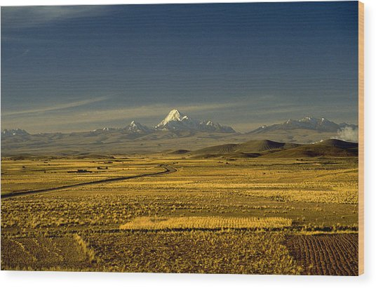 The Andes Wood Print