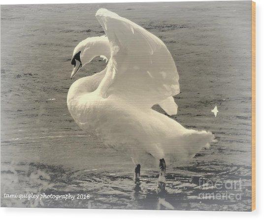 The Art Of The Swan  Wood Print
