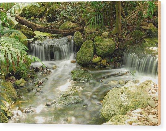 The Babbling Brook Wood Print