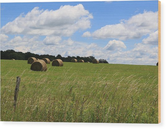 The Bales Of Summer 2 Wood Print