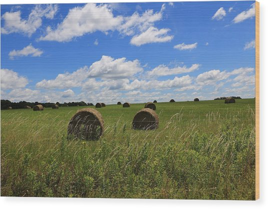 The Bales Of Summer Wood Print