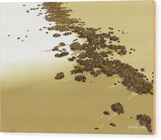 The Beach Wood Print by Jan Hattingh