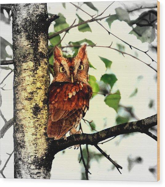 The Beauty Wood Print