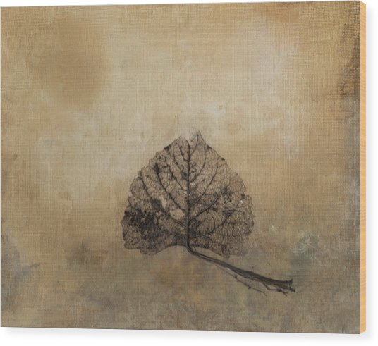 The Beauty Of Decay Wood Print