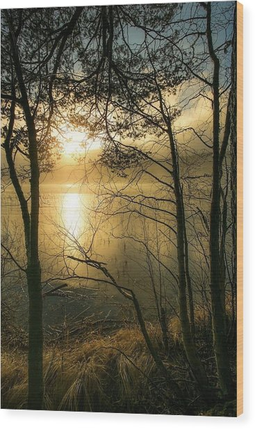 The Beauty Of Nature Wood Print