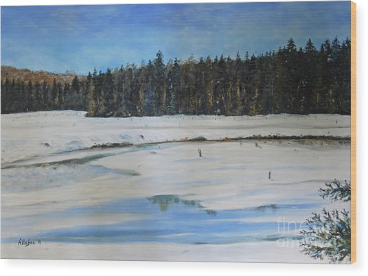 The Beaver Pond In Winter Wood Print