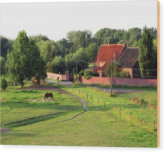 The Belgian Countryside Wood Print by David L Griffin